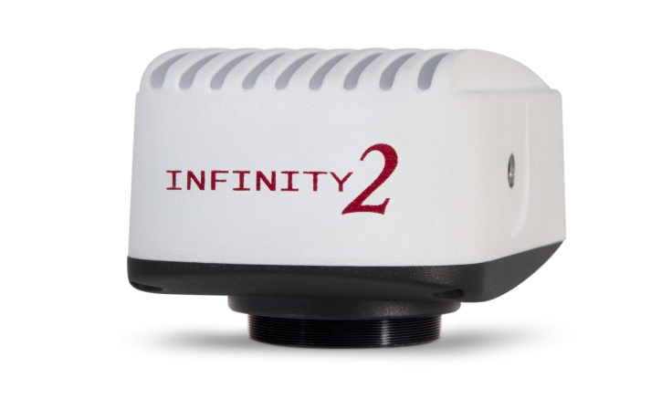 Infinity 2-2 (Microscopy)