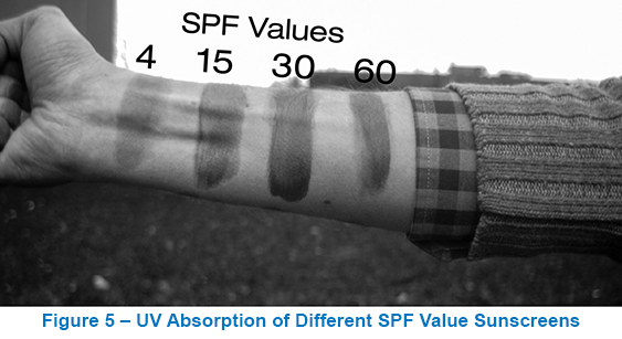 UV Absorption of Different SPF Value Sunscreens